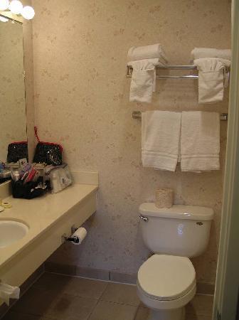 Best Western Lamplighter Inn & Suites at SDSU : chambre de bain