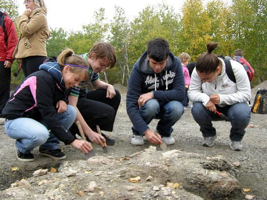 Canadian Fossil Discovery Centre: 100% SUCCESS RATE at FINDING FOSSILS since 2008!!