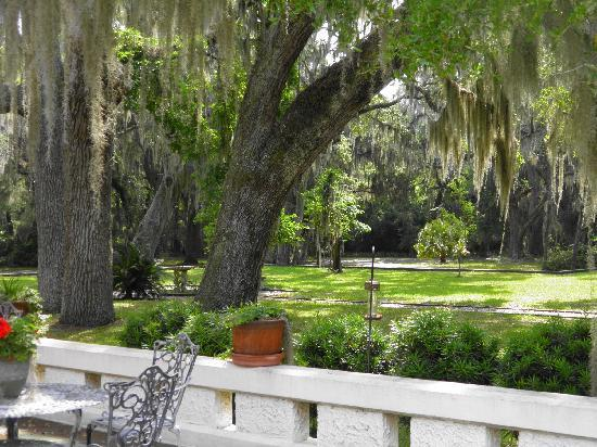 Sapelo Island National Estuarine Research Reserve: The  grounds of the Reynolds Mansion