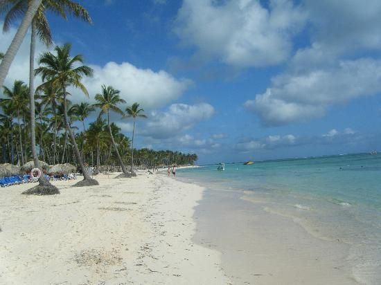 Dreams Palm Beach Punta Cana: beutiful beach!