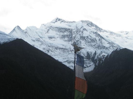 Himalaya Heart Treks & Expeditions: Annapurna region