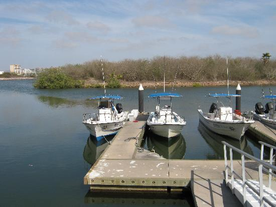 Inside Outside Charters : Boats at marina