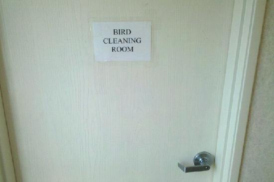 Comfort Inn: Designated Bird Cleaning Room