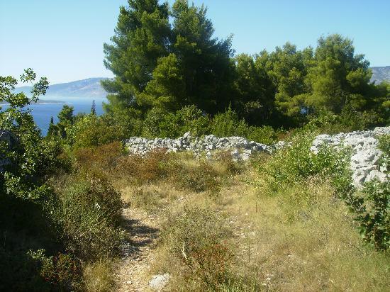 Hvareno: see hvarholidayrooms.com for more photos and details