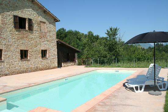Agriturismo Dragoncello : Swimming pool
