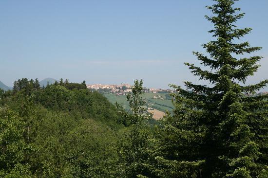 Agriturismo Dragoncello : The view