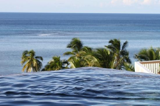 Taveuni Palms Resort: The infinity pool