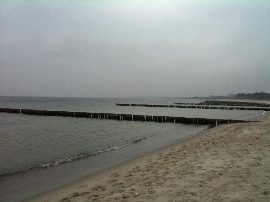 Yachthafenresidenz Hohe Dune : Umgebung