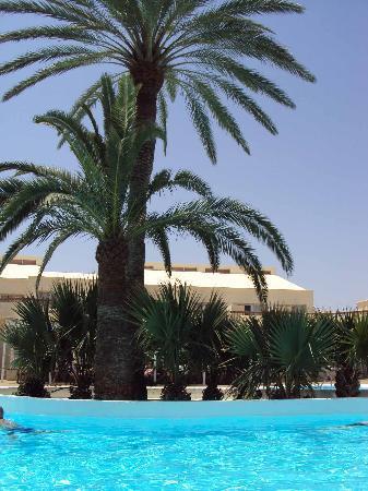 ClubHotel Riu Oliva Beach Resort : la piscine