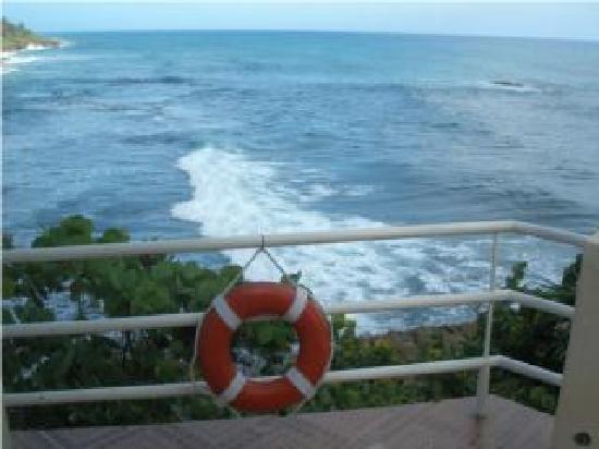 Kikita Beach Bar & Grill : beautiful ocean view