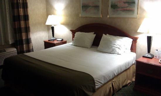 BEST WESTERN Troy Hotel: King bed