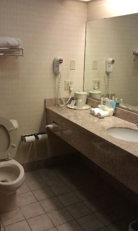 Hotel Bathroom Sink : Best Western Troy Hotel: Bathroom sink