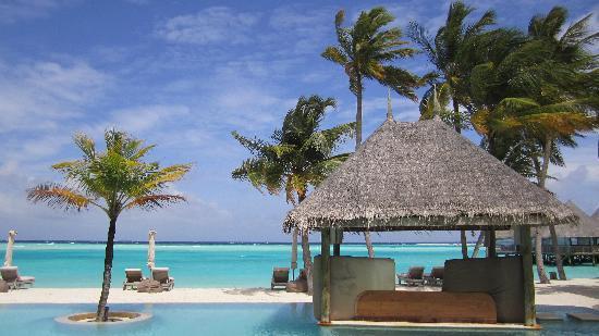 Gili Lankanfushi Maldives: ininity pool in paradise