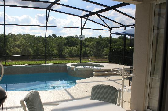 Windsor Palms Resort: Private pool with a view