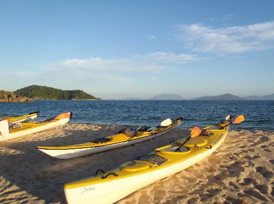 Coral Sea Kayaking : Beautiful, wilderness beaches