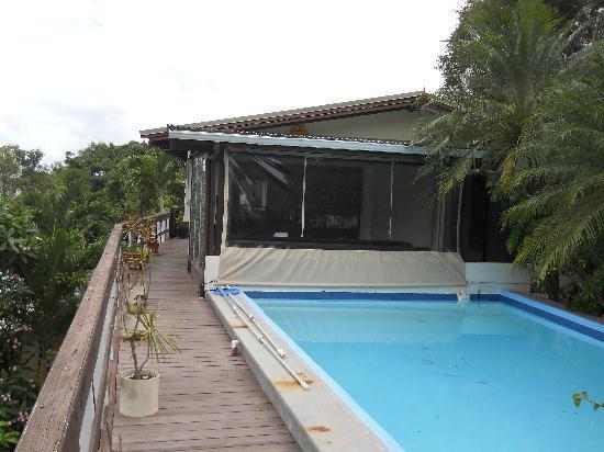 Hummingbird House: View of Pool