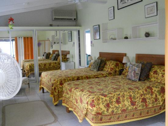 Hummingbird House: Our room
