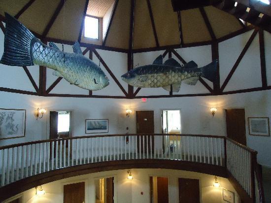 燈塔俱樂部飯店張圖片