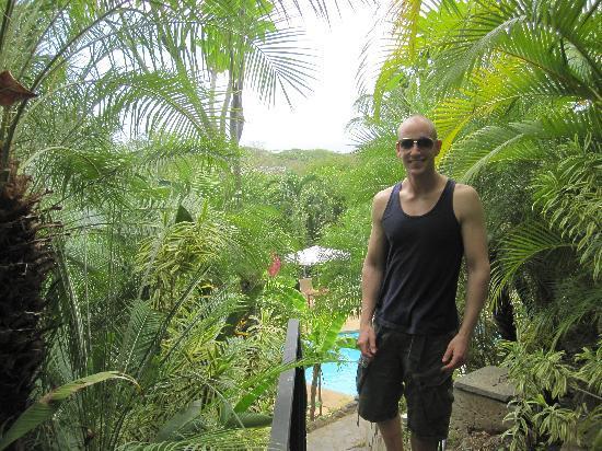Tamarindo Village Hotel : The lush grounds