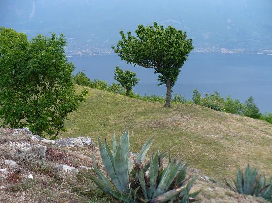 Hotel Villa Selene: Villa Selene, Aussicht auf den Gardasee