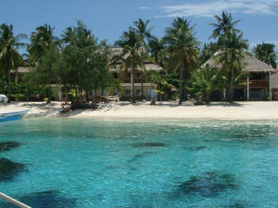 Ocean Vida Beach & Dive Resort: Resort vom Meer aus