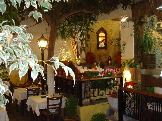 Vasilis Restaurant: vista del giardino