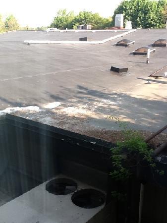 Fairfield Inn Boston Dedham: The view