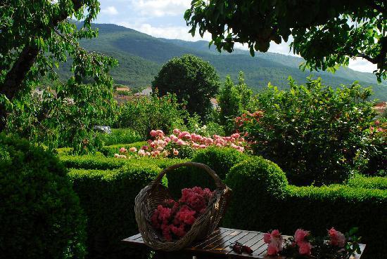 El jardin del convento hervas spanien kro for Jardin del convento