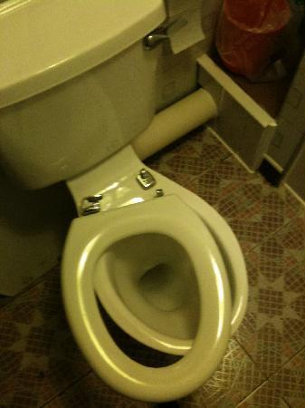 Hill View Private Hotel: Broken shared toilet