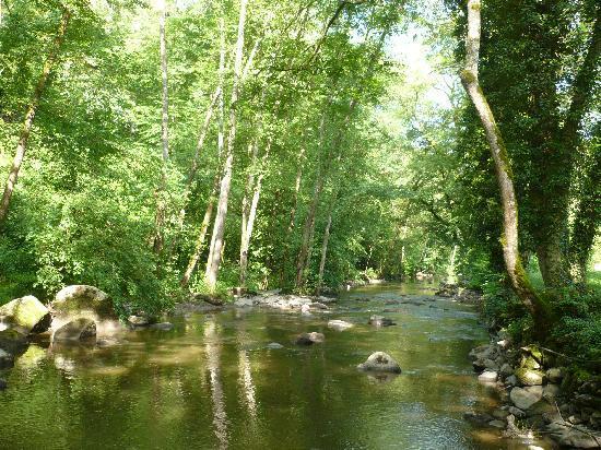 Moulin des Ruats: La rivière du cousin