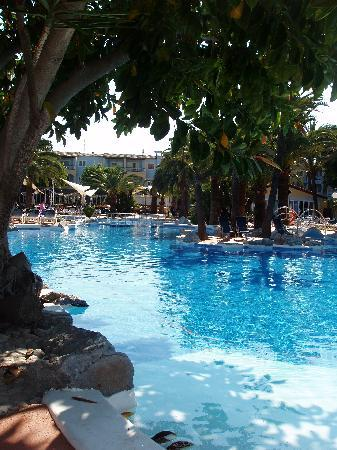 Alcudia Garden Aparthotel: Pool view at hotel