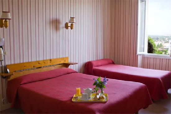 Hotel Des Pyrenees: Chambre calme, coté jardin.