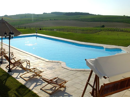 Le Relais de Saint Preuil: The pool facing vineyards / la piscine face aux côteaux