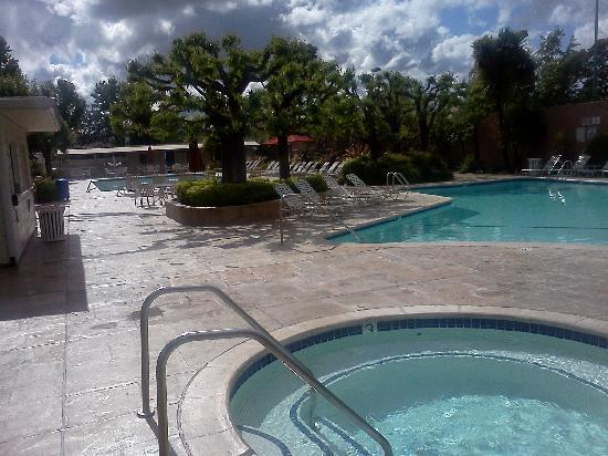Silverado Resort and Spa: Pool