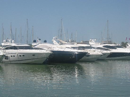 Vila Gale Marina: if I won the lottery!!