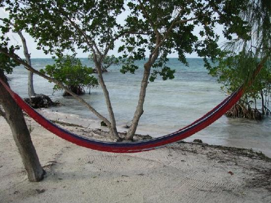 Coco Plum Island Resort: the hammock awaits