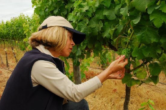 Vina Casa Marin Winery: Owner & Winemaker Maria Luz Marin
