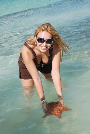 SeavisTours: Seesterne hautnah erleben