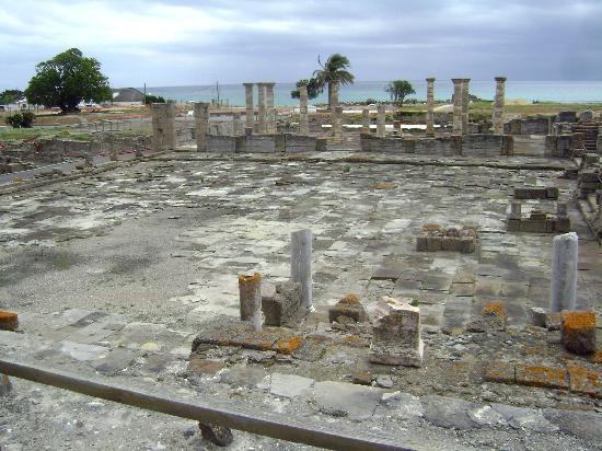 Hotel Antonio: Bolonia ruinas romanas