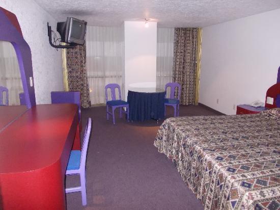 Hotel El Ejecutivo: 室内