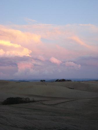Belvedere Agriturismo : Panorama
