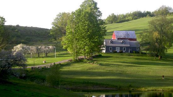 Windswept Acres: Springtime
