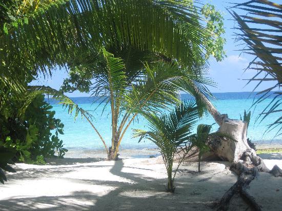 Kuramathi Island Resort: vu depuis villa beach jacuzzi