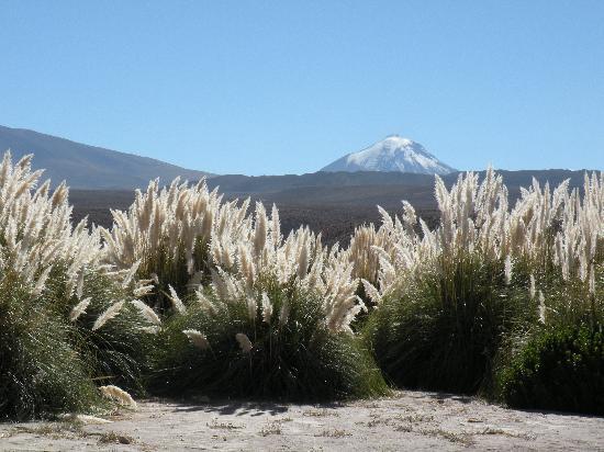 Alto Atacama Desert Lodge & Spa: Vista Atacama