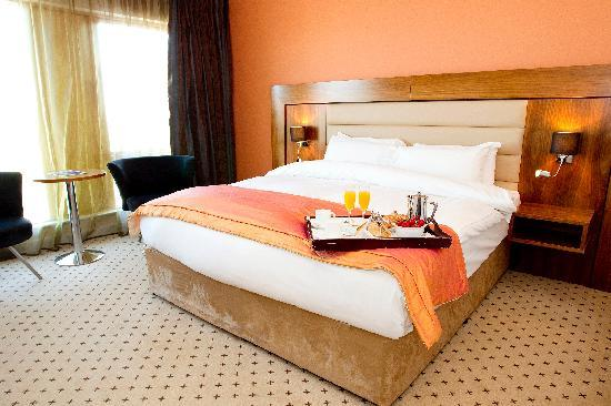 Athlone Springs Hotel: Superior Double Room