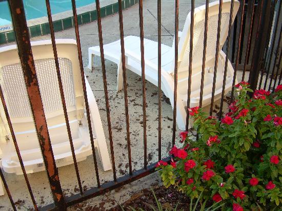 The Palms Hotel and Villas: debri from sidewalks being sandblasted