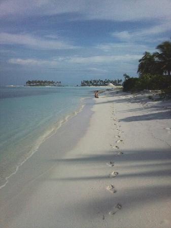 Fun Island Resort : the beach