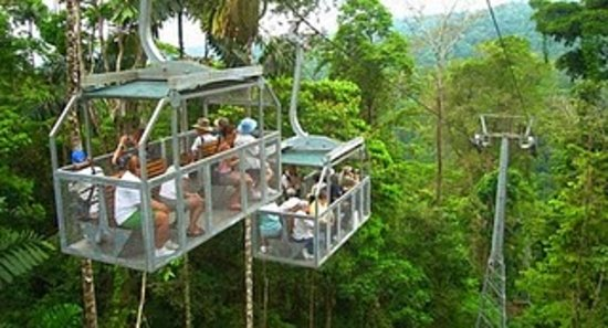 Your Lucky Tour: Veragua Rainforest (Gondola)
