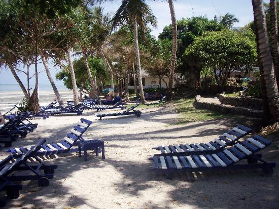 Kaskazi Beach Hotel: Liegen a. Strand