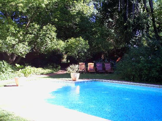 Lupus Den Country House: the beautiful pool